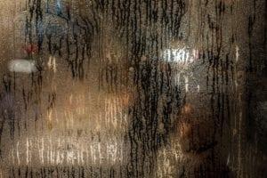 Damp & Condensation